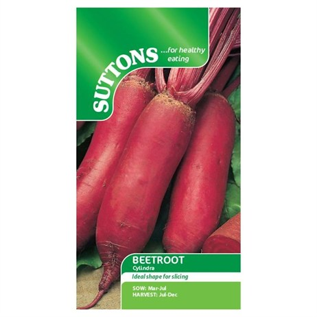 Suttons Beetroot Seeds - Cylindra (151820)