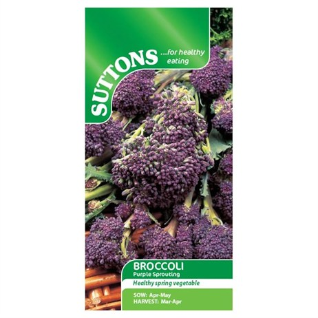 Suttons Broccoli (Sprouting) Seeds - Purple (152729)