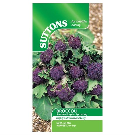 Suttons Broccoli (Sprouting) Seeds - Summer Purple (152796)