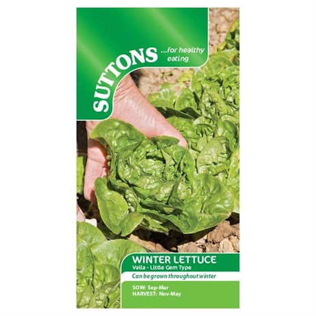 Suttons Lettuce Seeds - Vailan - Winter Gem (167916)