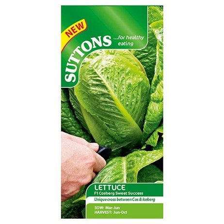 Suttons Lettuce Seeds - Cosberg Sweet Success F1 (169470)