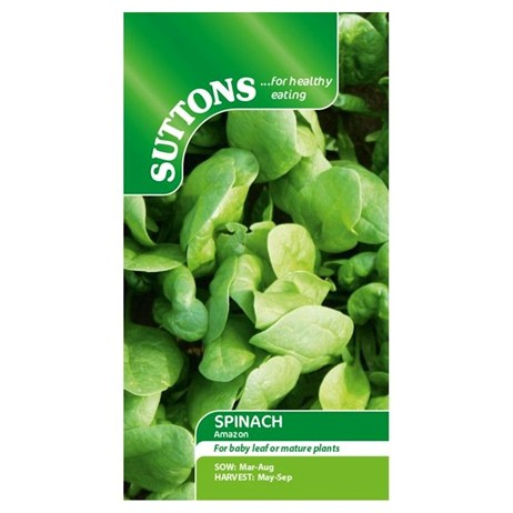 Suttons Spinach Seeds - F1 Amazon (178210)