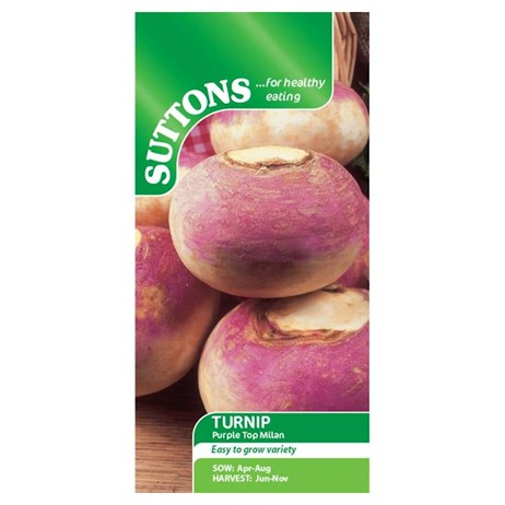 Suttons Turnip Seeds - Purple Top Milan (182789)