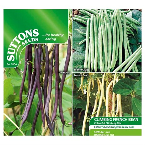 Suttons Bean (Climbing French) Seeds - Colourful Climbing Mix (195570)