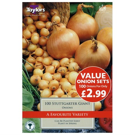 Taylors Bulbs Value Onion Stuttgarter Giant (100 Pack) (ESV260)