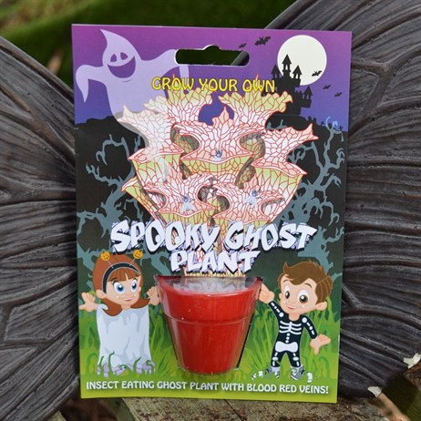 Fun Seeds - Grow Your Own: Spooky Ghost Plant