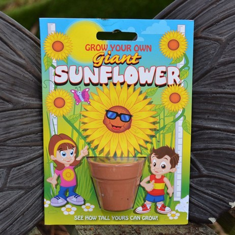 Fun Seeds - Grow Your Own: Giant Sunflower