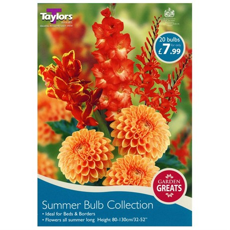 Taylors Bulbs Summer Bulb Collection (20 Pack) (SV301)