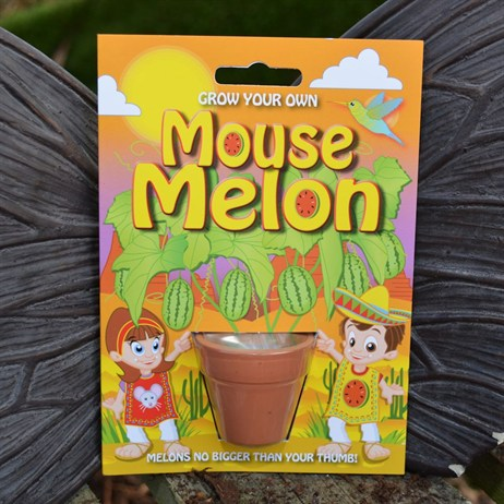 Fun Seeds - Grow Your Own: Mouse Melon