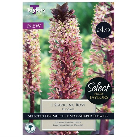 Taylors Bulbs Eucomis Sparkling Rosy (Single Pack) (SSE154)