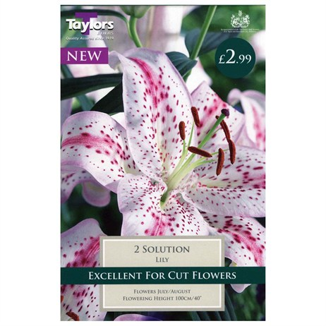 Taylors Bulbs Lily Solution (2 Pack) (TS540)