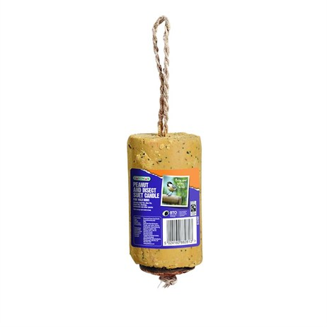 Gardman Peanut and Insect Suet Candle 350g (A04319)