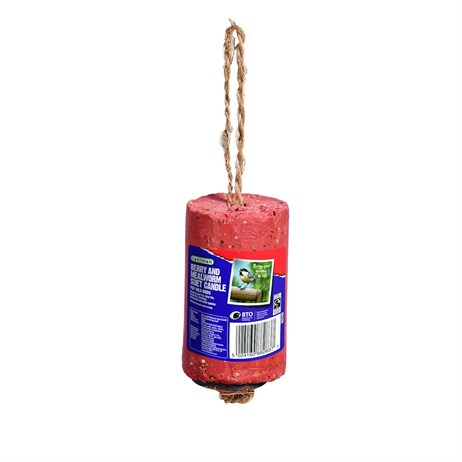 Gardman Berry and Mealworm Suet Candle 350g (A04320)