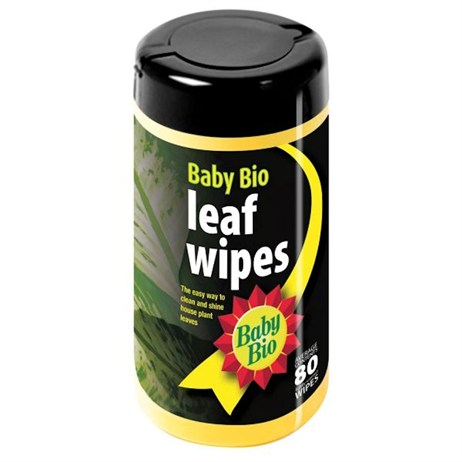 Bayer Baby Bio 80 Leaf Wipes