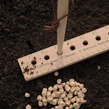 Burgon & Ball Seed and Plant Spacing Rule (GYO/PRULE)