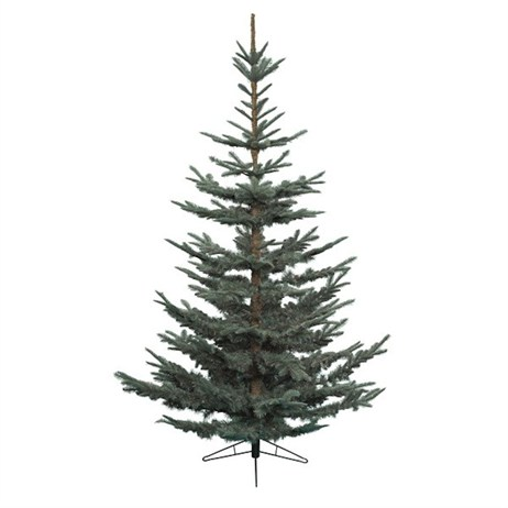 Kaemingk 180cm (6ft) Blue Nobilis Fir Artificial Christmas Tree (689211)