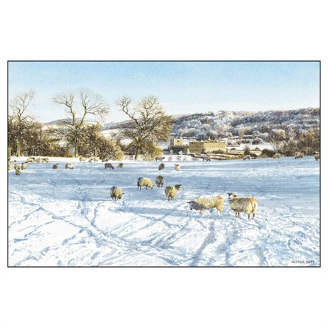 Noel Tatt 8  Pack Charity Christmas Cards - Sheep Scene - 10x15cm (41530)