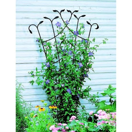 Panacea Forged Fan Trellis with Leaves - Black (89482)