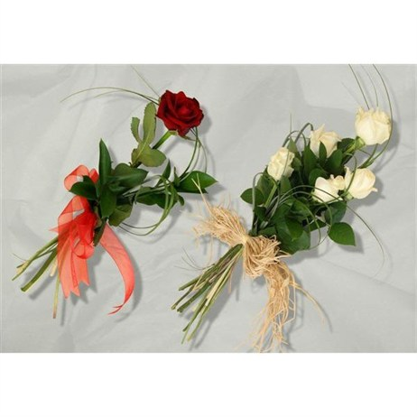With Sympathy Flowers - Single Red Rose
