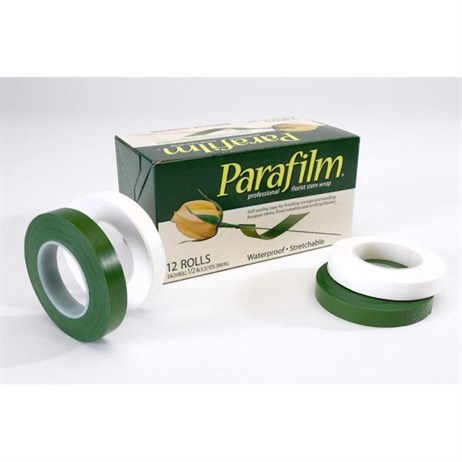 Oasis® Parafilm Tape 2 Pack (6155)