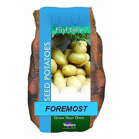 Taylors Bulbs Seed Potatoes Foremost (2Kg Pack) (VAC408)