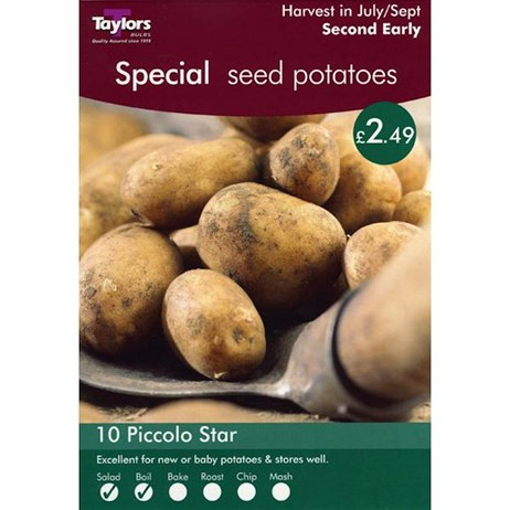Taylors Bulbs Seed Potatoes Piccolo Star (Second Early) (10 Pack) (VP462)