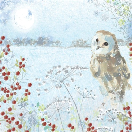 Ling 6 Pack Charity Christmas Cards - Owl Scene - 13.5cm (X12128RCJP)