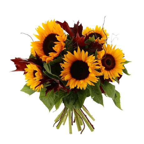 Autumnal Sunflower Handtied Bouquet