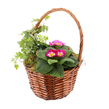 Christmas Bedding Outdoor Potted Arrangement Brown Round Wicker Basket