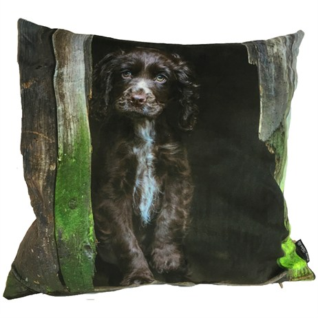 Country Matters Choc Coco Cocker Cushions (CMCUSH0129)