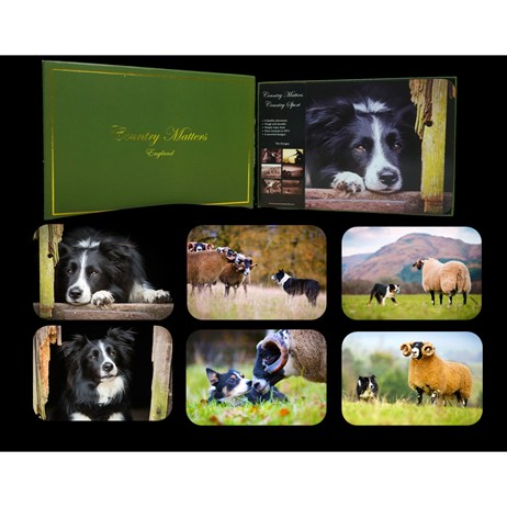 Country Matters Collie Placemats (CMPMCR0001)