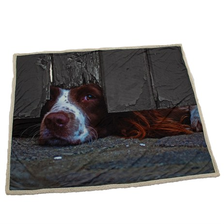 Country Matters I Spy Spaniel Throws (CMTHR0045)