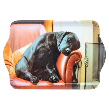 Country Matters Sleeping Lab Trinket Trays (CMTT0044)