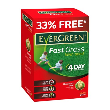 Evergreen Fast grass Lawn Seed With 33% Extra - 15m2 (118015)