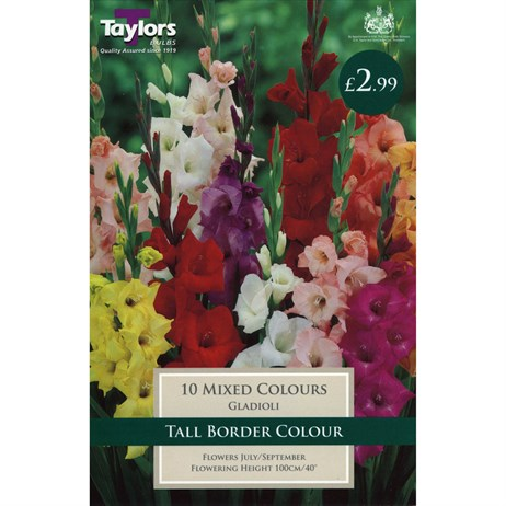 Taylors Bulbs Gladioli Mixed Colours (10 Pack) (TS119)