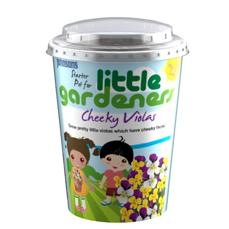 Little Gardeners Cheeky Violas Starter Pot (21775)