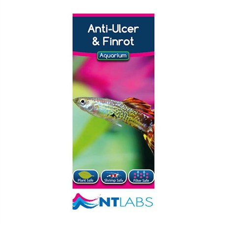 NT Aquarium Anti-Ulcer & Finrot 100ml Fish Treatment