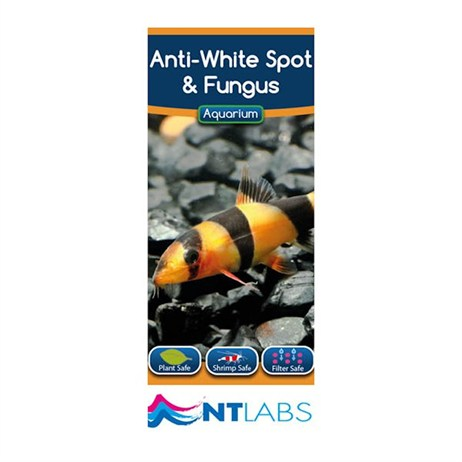NT Aquarium Anti-White Spot & Fungus 100ml Fish Treatment