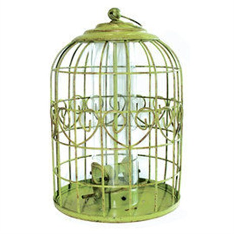 Peckish Squirrel Proof Seed Wild Bird Feeder (60053032)