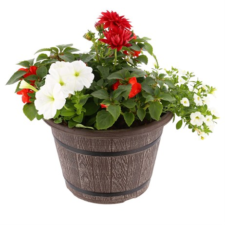 Planted Barrel 12 inches Outdoor Planter Bedding Container