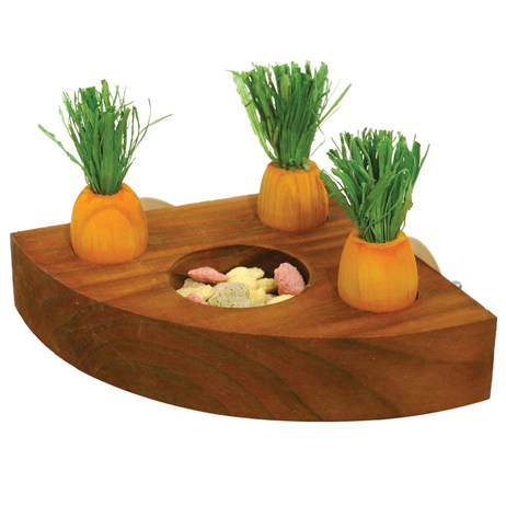 Rosewood Carrot Toy n Treat Holder (19260)