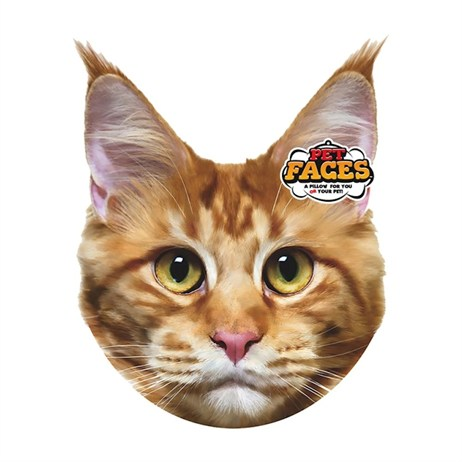 Rosewood Pet Faces Cushions - Maine Coon Cushion