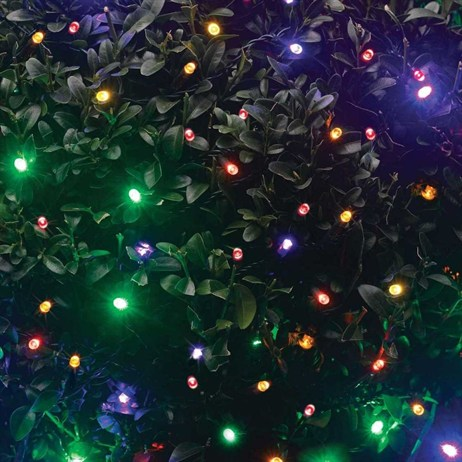 Smart Garden 100 Multi Coloured Leds String Lights (1921110RP)