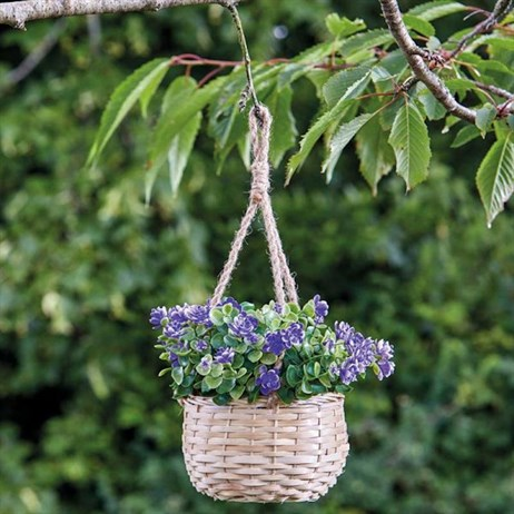 Smart Garden Basket Bouquet - Blue (5040055)