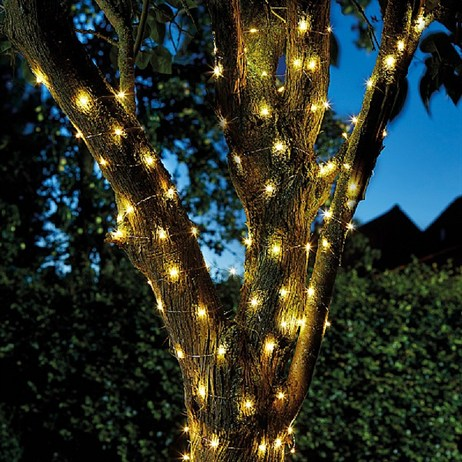Smart Garden Firefly Warm White 50 Led Solar String Lights (1060258)