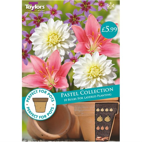 Taylors Bulbs Pastel Collection (10 Pack) (SPPA03)