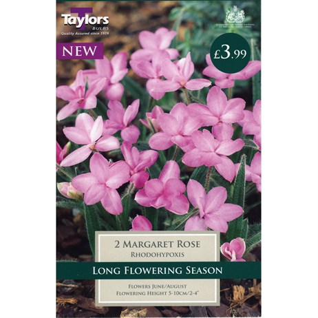 Taylors Bulbs Rhodohypoxis Margaret Rose (2 Pack) (TS798)