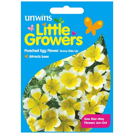 Unwins Seeds Little Growers Poached Egg Flower Sunnyside (30510020) Seeds for Kids