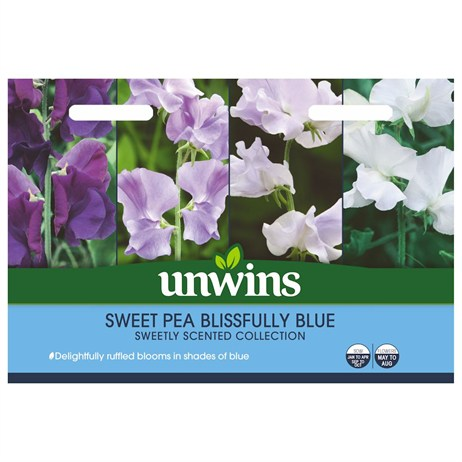 Unwins Seeds Sweet Pea Blissfully Blue (30210622)