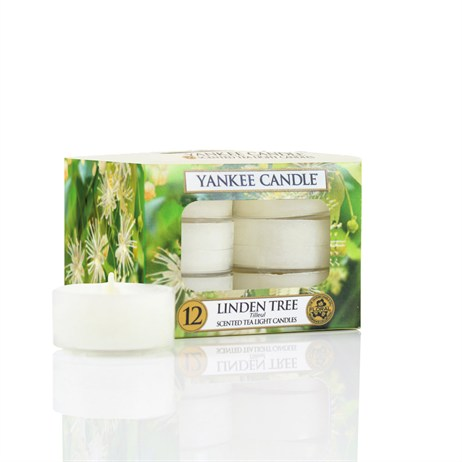 Yankee Candle - Tea Lights - Linden Tree (1542835E)